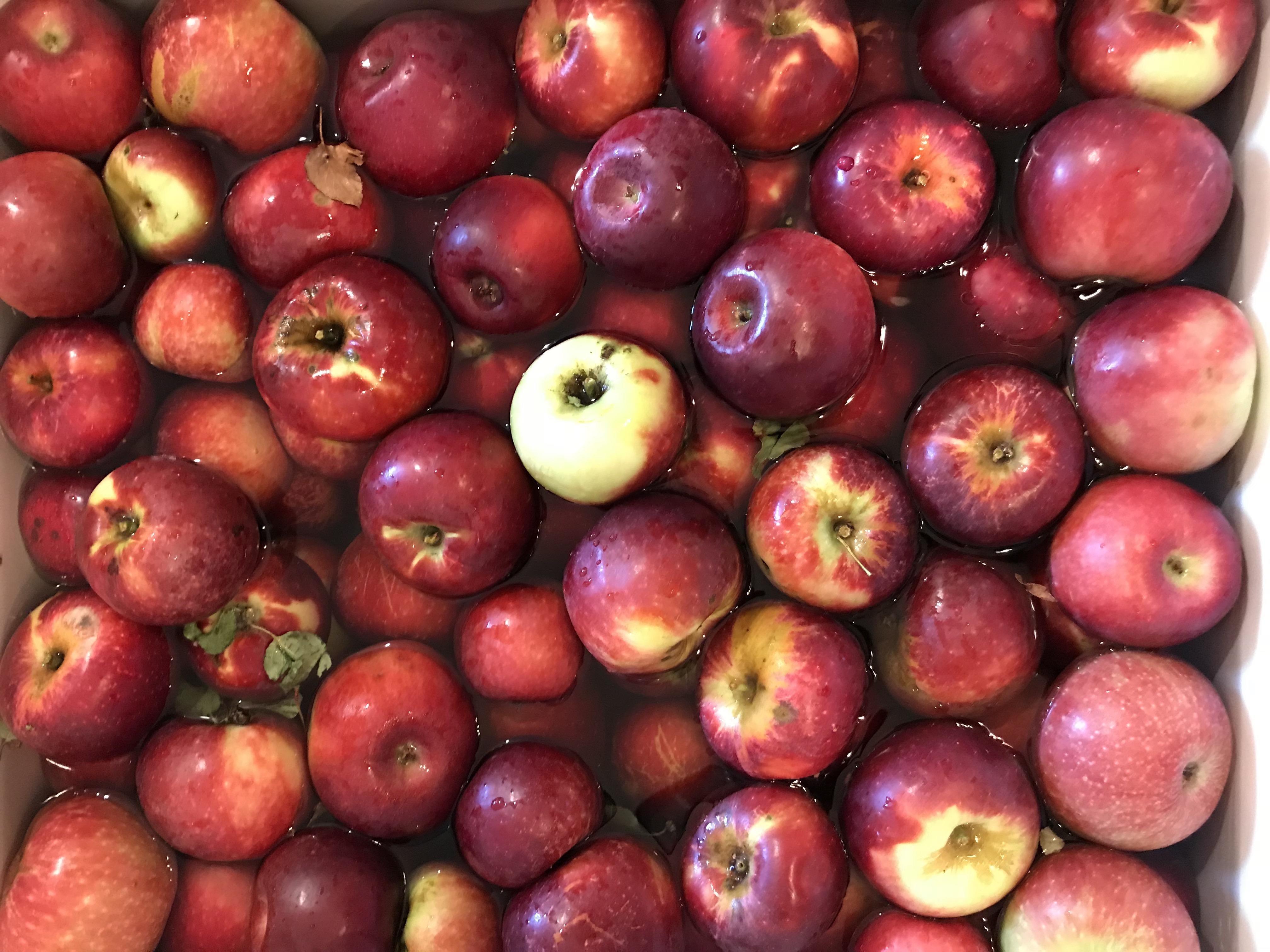 fruitvegetablestamppainting