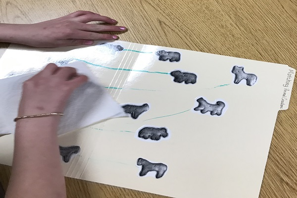 animalcrackermatchingfolder