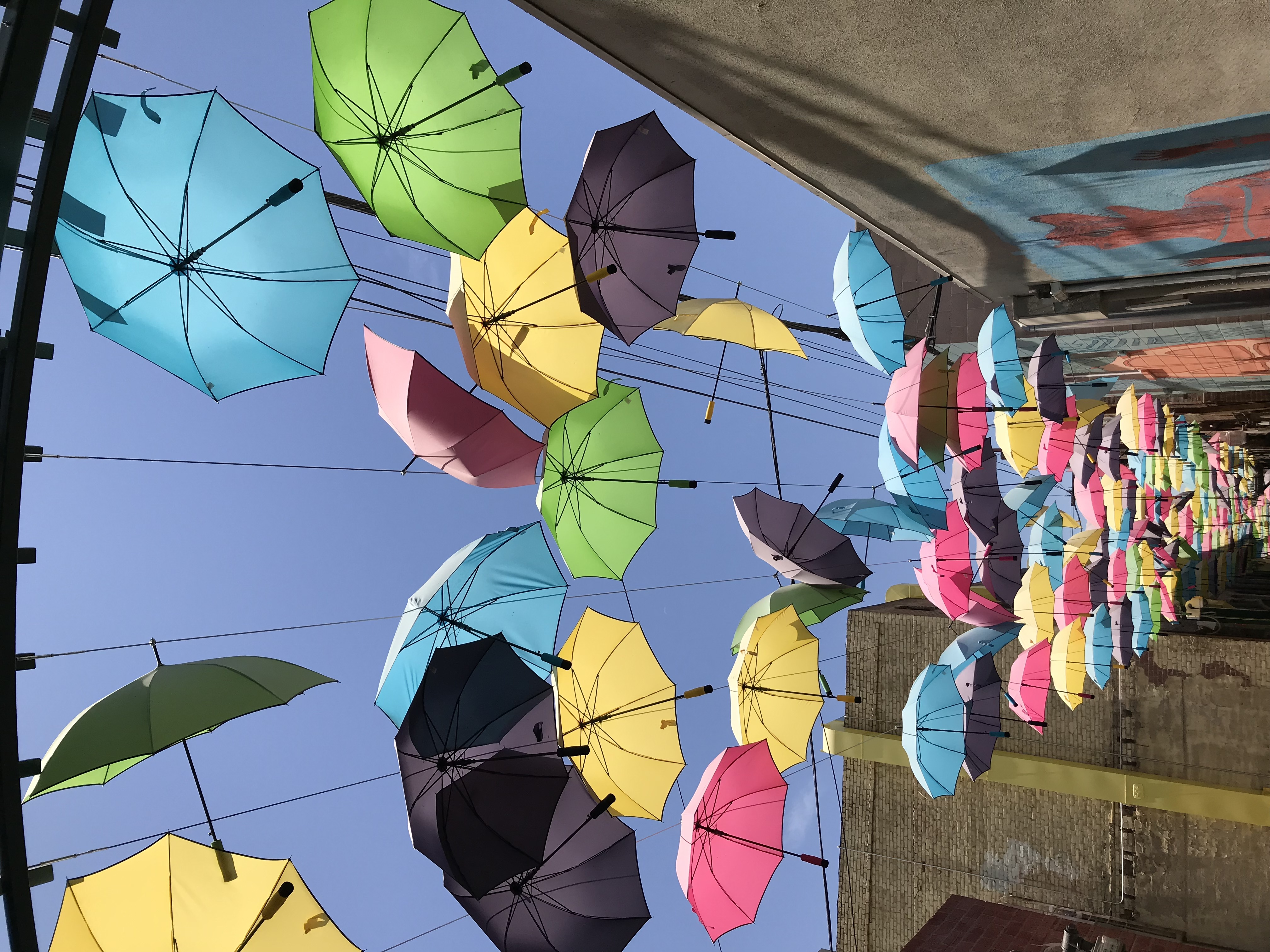 Colorful umbrellas on wires